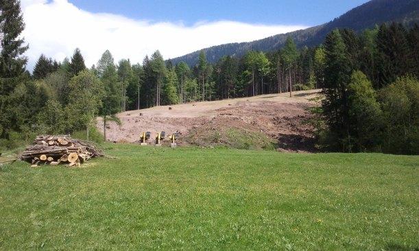 Lo squarcio nel bosco: un turista credeva fosse una pista da sci!