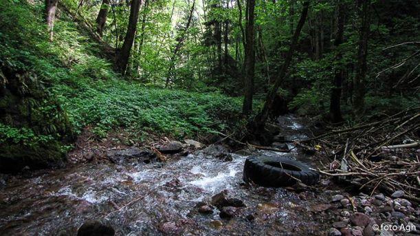 La splendida forra del Rio Negro ridotta a discarica