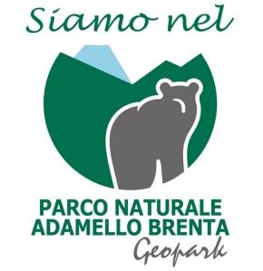 L'immagine dell'orso utilizzata nella pubblicità del Parco Naturale Adamello Brenta